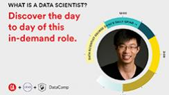 What is a Data Scientist